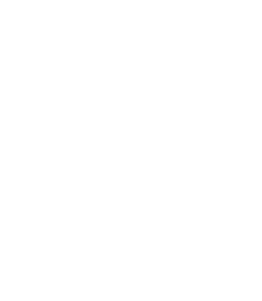 Precious Minds, New Connections logo